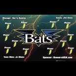 Bats Vinyl Baseball Team Banner - E-Z Order