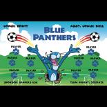 Panthers Blue Vinyl Soccer Banner - Live Designer