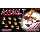 Assault Softball Team Banner - Live Designer