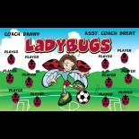 Ladybugs Vinyl Soccer Banner - E-Z Order