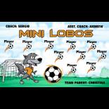 Lobos Mini Fabric Soccer Banner - E-Z Order
