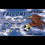 Falcons Vinyl Soccer Banner - Live Designer