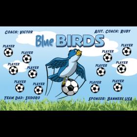 Blue Birds Vinyl Soccer Banner - Live Designer