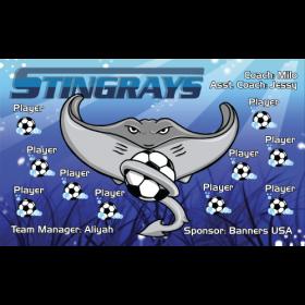 Stingrays Vinyl Soccer Banner - Live Designer