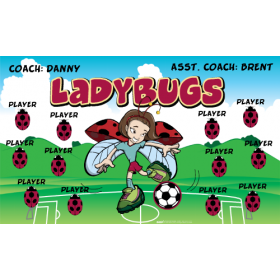 Ladybugs Fabric Soccer Banner - E-Z Order