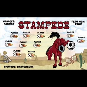 Stampede Fabric Soccer Banner E-Z Order