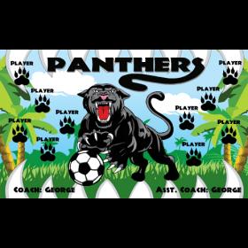 Panthers Vinyl Soccer Banner - Live Designer