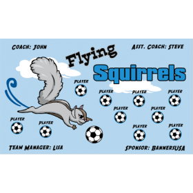 Squirrels Flying Vinyl Soccer Banner - Live Designer