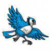 Birds  - Soccer Art  ®