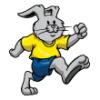 Bunny Rabbits  - Soccer Art  ®