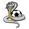 Cobras  - Soccer Art  ®