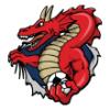 Dragons  - Soccer Art  ®
