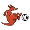 Kanga Family  - Soccer Art  ®