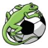 Lizards  - Soccer Art  ®