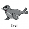 Seal Family  - Soccer Art  ®