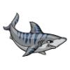 Sharks  - Soccer Art  ®