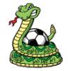 Snakes  - Soccer Art  ®