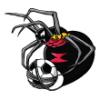Spiders  - Soccer Art  ®