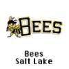 Bees-Salt-Lake